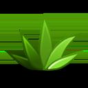 Run desktop app Agave online