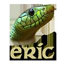 Run desktop app Eric online