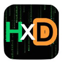 Run desktop app HxD online
