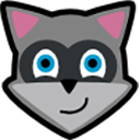 Run desktop app Raccoon online