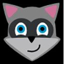 Run desktop app Raccoon online