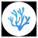 Run desktop app VSCodium online