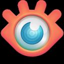 Run desktop app XnView online